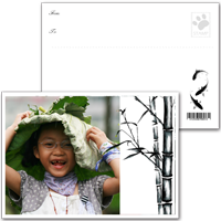 明信片(1組6張)免運費